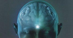 Будда, мозг и нейрофизиология счастья. Как изменить жизнь к лучшему