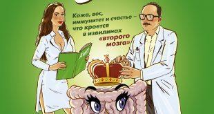Кишка всему голова. Кожа, вес, иммунитет и счастье – что кроется в извилинах «второго мозга»