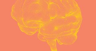 Революция в голове. Как новые нервные клетки омолаживают мозг